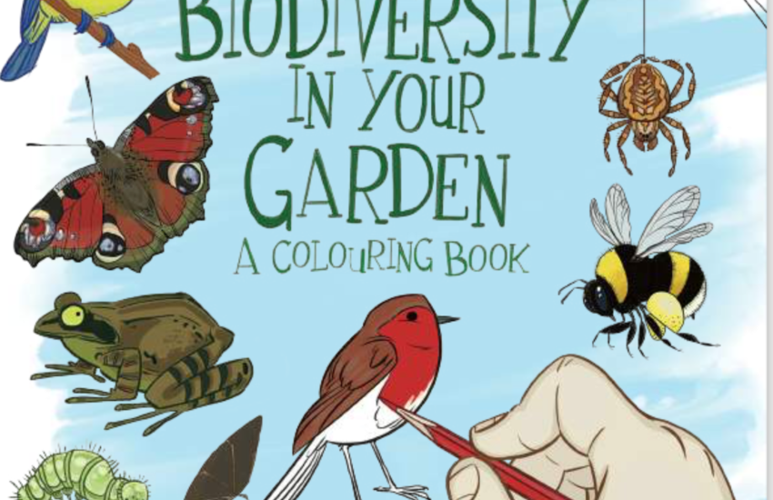 Biodiversity for garden Colouring book